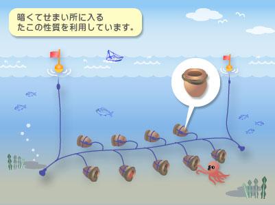 たこつぼ漁業1