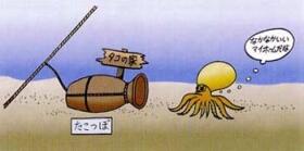たこつぼ漁業2